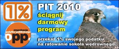PIT 2010
