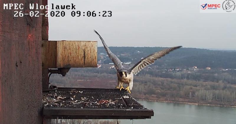 Włocławek . - Pagina 3 Bandicam2020-02-2609-07-29-549