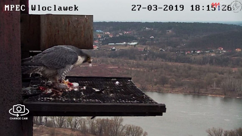 Włocławek . - Pagina 2 Wl2_2019-03-27